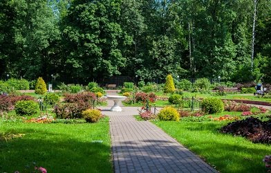 Малый розарий в парке Сокольники.