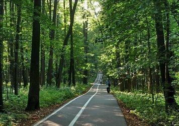 Природно-исторический парк Измайлово