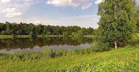 Лебедянский пруд.