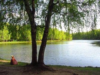 Красный пруд в Измайловском лесопарке.