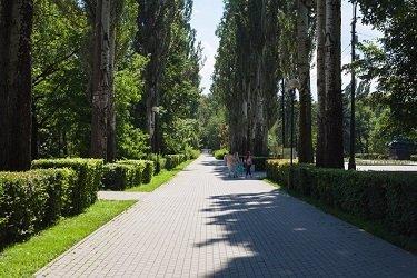 Аллеи парка культуры и отдыха Измайловский.